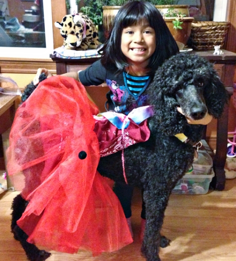 Standard Poodle and Child